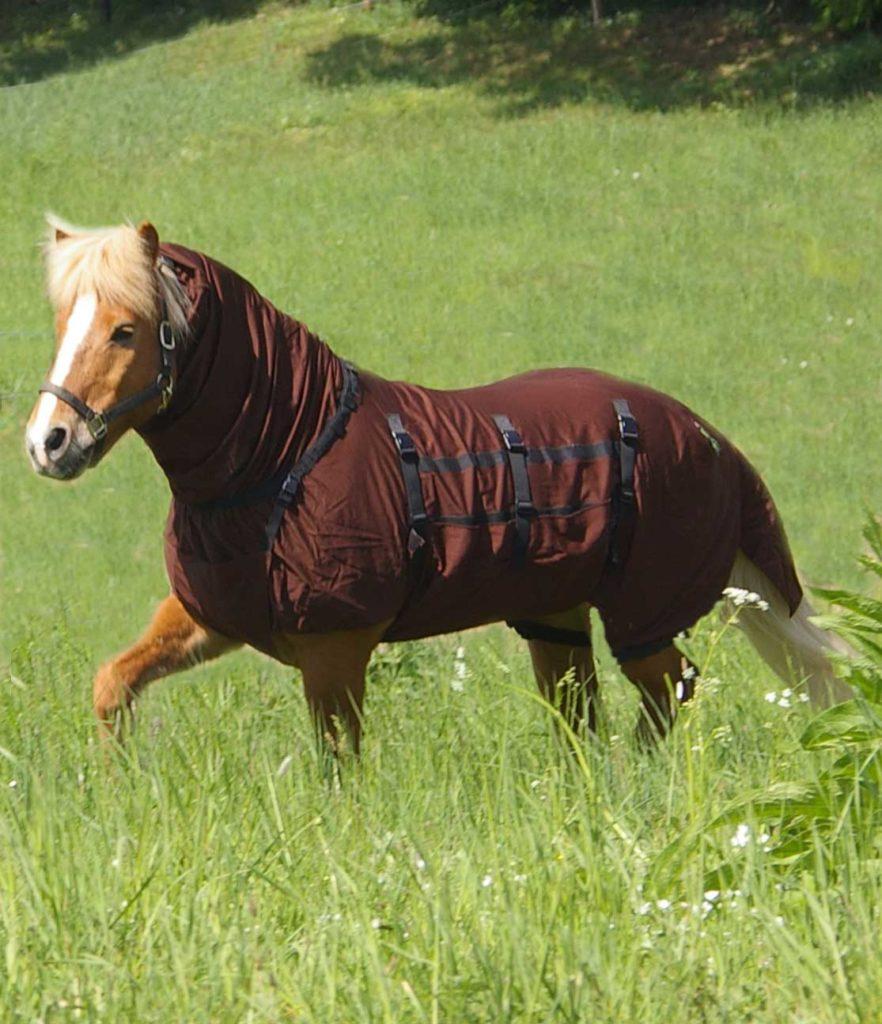 Fly Free Abee Ekzemerdecke Sommerekzem Pferd