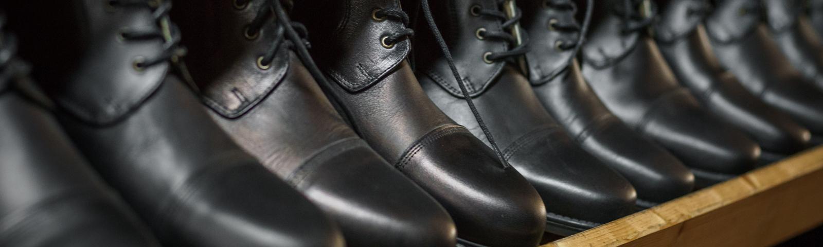 Reitschuhe Schuhpflege Lederpflege